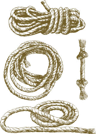 Sketches of a tangled rope. Ilustrace