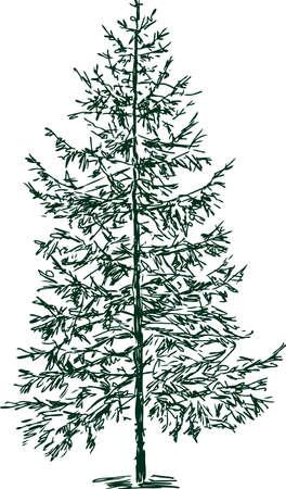クリスマスツリーのイラスト。  イラスト・ベクター素材