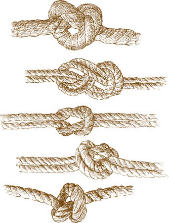 Sketches of the different sea knots Çizim