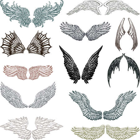 Sketches of the different fictional wings