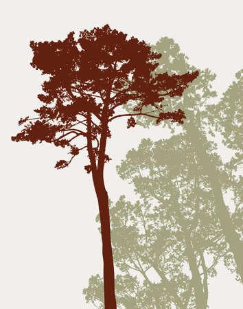 松の木のシルエット