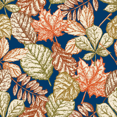 Pattern of autumn leaves of different deciduous trees Illustration