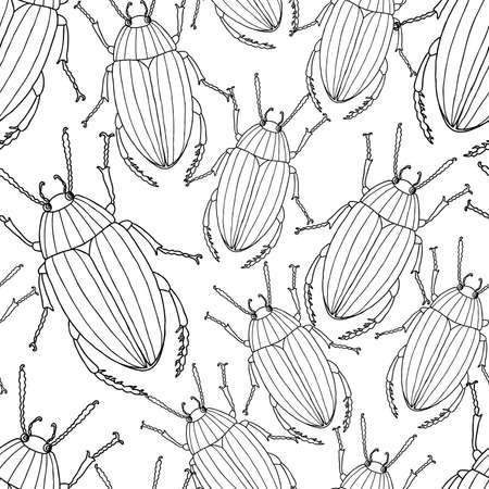 Patrón de los escarabajos dibujados