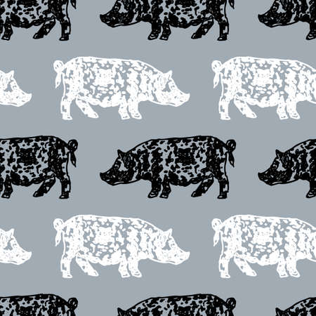 Vector background of spotted pigs 免版税图像 - 113929570