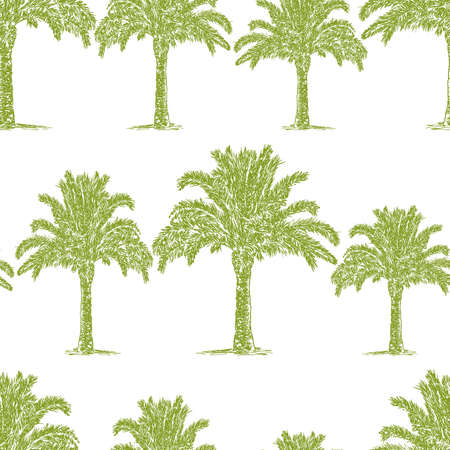 Seamless pattern of sketches of palm trees