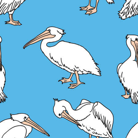 Seamless pattern of cartoon pelicans Reklamní fotografie - 121496718