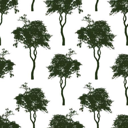 Sfondo senza soluzione di continuità di sagome di alberi decidui