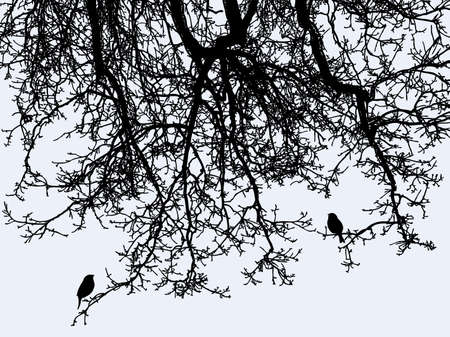 The birds on the tree branches in winter forest Stock Illustratie
