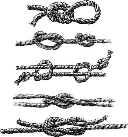 A set of different sea knots Stock Illustratie