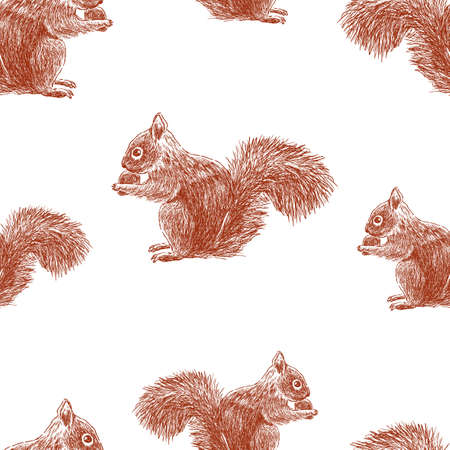 Seamless pattern of squirrels sketches Stock Illustratie
