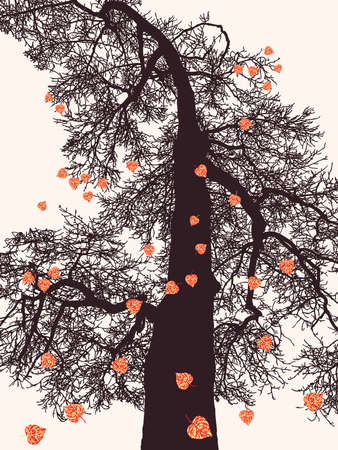 Vector image of  deciduous tree with last falling leaves in autumn season