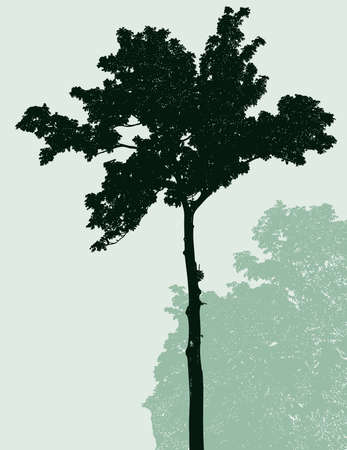 Vector image of single tree in summer forest
