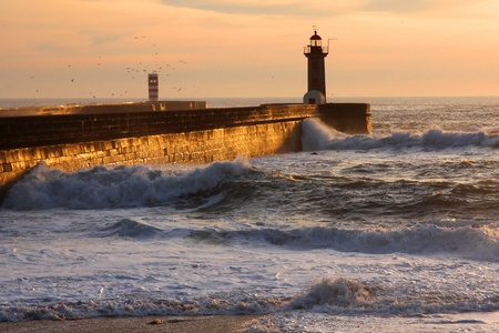 waves, ocean, water, porto, portugal, lighthouse, rock, stone, seagulls, lamp coast, sea, warn, safety, stormy, architecture, security, tower, landmark, navigation, shore, signal, sky, sunset photo