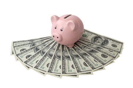 pink piggy bank on dollars  photo
