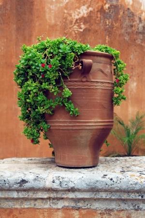 Ancient greek terracotta flowerpot photo