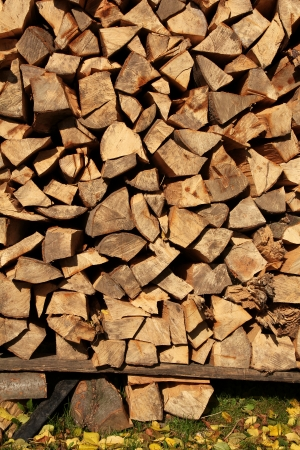 Wood logs background photo