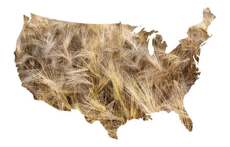 barley field: USA map with barley field background