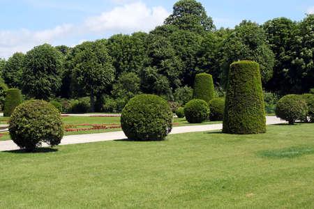 Regular hedges and bushes in Schonbrunn garden in Vienna, Austria  photo