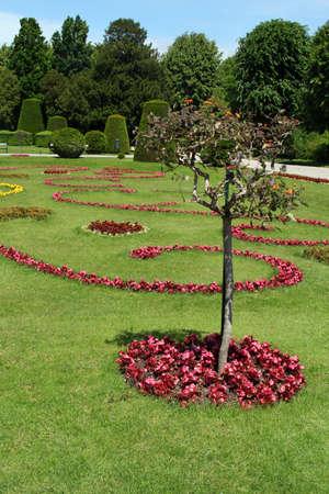 Beautiful Schonbrunn Garden in Vienna, Austria photo