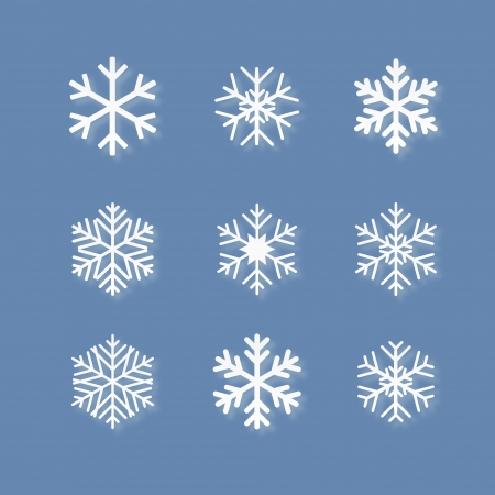 set of white snowflakes on blue background  Vector