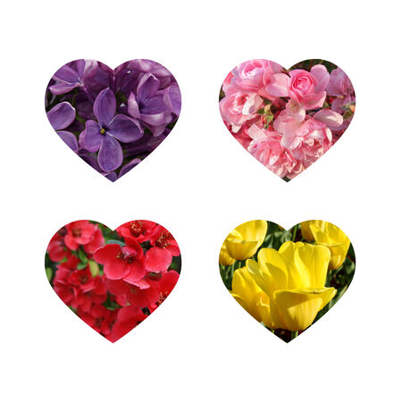 Four flower hearts photo
