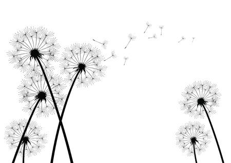 Dandelion Фото со стока - 25790412