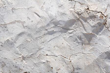 whitewashed: Whitewashed wall texture or background Stock Photo