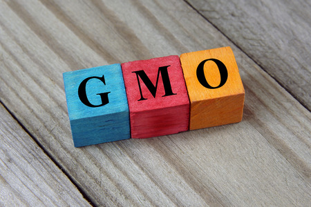 concept of  GMO word on wooden cubes photo