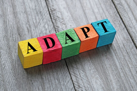 adapt: word adapt on colorful wooden cubes