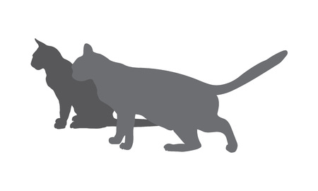 two gray silhouettes of cats Vector