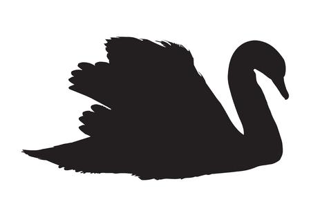 gentleness: black silhouette of swan