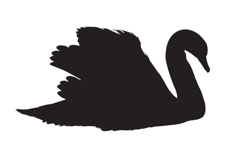 black silhouette of swan
