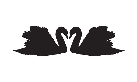 mute swan: two silhouettes of swans