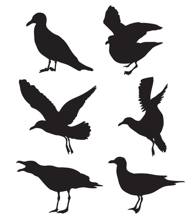 gentleness: Set of seagulls silhouettes