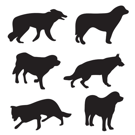 black silhouettes of different dogs Vector