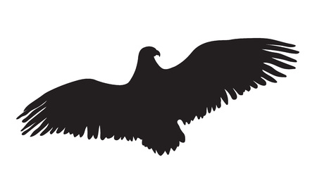 adler silhouette: Adler Silhouette