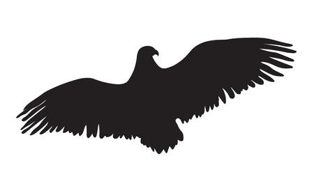 silhouette aquila: eagle silhouette