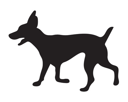 funny dog: black silhouette of dog