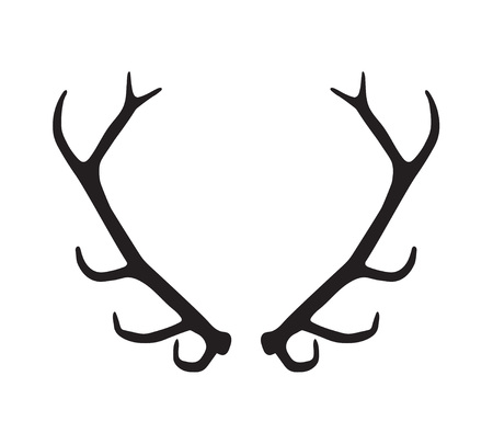 animal silhouette: black silhouette of antlers