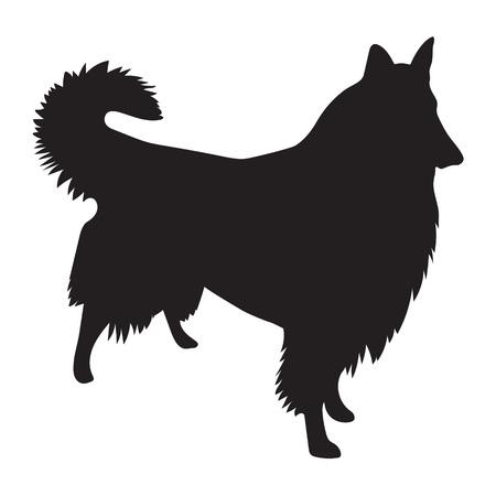 scottish collie: vector black silhouette of Rough Collie dog Illustration