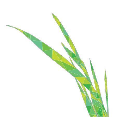 grass blade: polygonal blade of grass, vector illustration Illustration