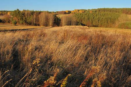 kazimierz dolny: Scenic autumn countryside landscape during sunset