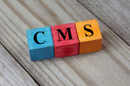 management system: Text CMS Content Management System on colorful wooden cubes
