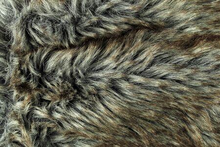 blue grey coat: fur background