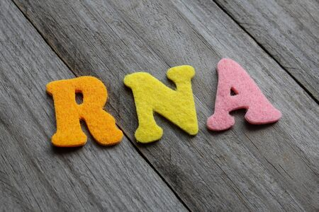 RNA (ribonucleic acid) acronym on wooden background