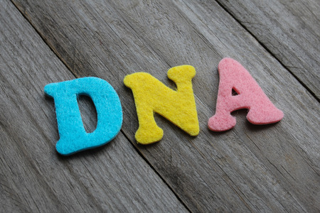 deoxyribonucleic: DNA (deoxyribonucleic acid) acronym on wooden background Stock Photo
