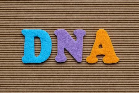 acido: ADN (ácido desoxirribonucleico) concepto médico Foto de archivo