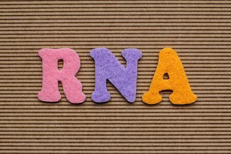 rna: RNA (ribonucleic Acid) medical concept