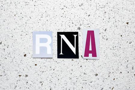 rna: RNA (ribonucleic acid) acronym cut from newspaper on white handmade paper texture Stock Photo