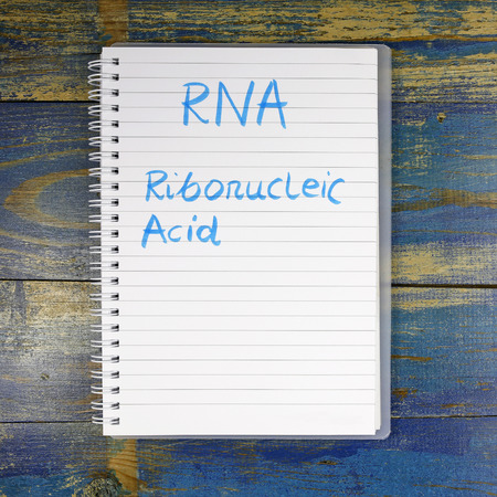 rna: RNA - ribonucleic acid text written in notebook